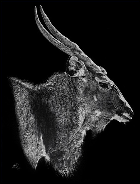 Картины в технике скрэтчборд от Кристины Пенеску — фото 23