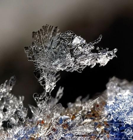 Андрей Осокин – фотограф, которому позируют снежинки — фото 10