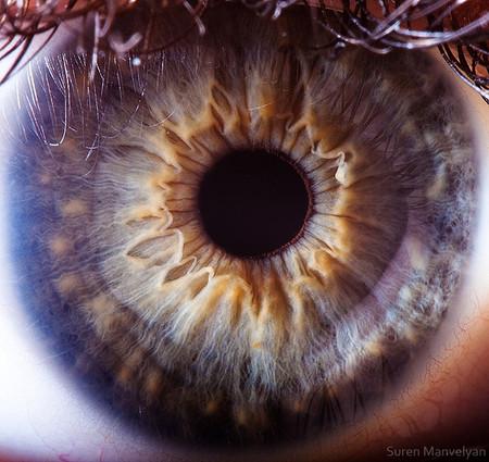 Глаза людей и животных – макроснимки Сурена Манвеляна — фото 26