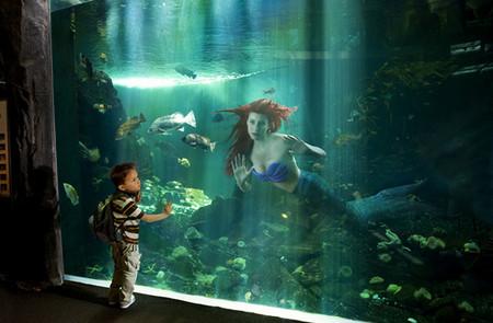 Сказочные принцессы в реальном мире – фантазии Дины Гольдштейн. Долой хэппи – энды! — фото 7