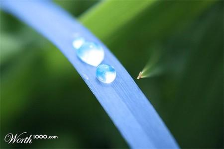 Что, если мир станет более … голубым? Красивый фотошоп — фото 40