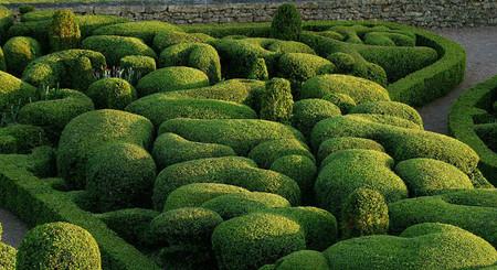 Настоящий шедевр садового ландшафтного искусства