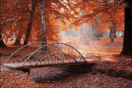 Осень умеет уходить красиво. 55 причин полюбить осень — фото 3