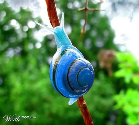 Что, если мир станет более … голубым? Красивый фотошоп — фото 51