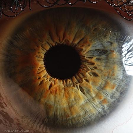 Глаза людей и животных – макроснимки Сурена Манвеляна — фото 17