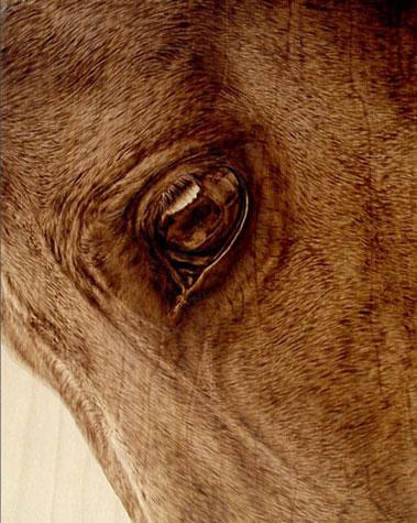 Пирография – горячая живопись Джулии Бендер — фото 17