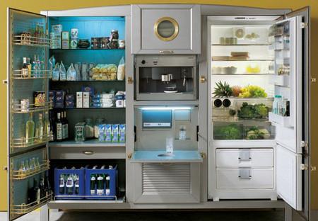 В таком холодильнике можно жить ))