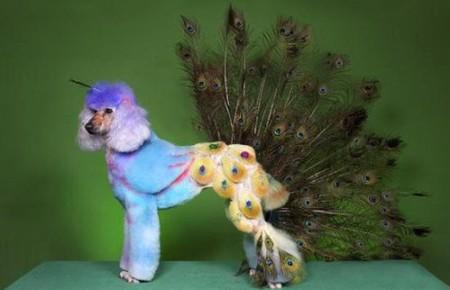 Собачий арт в работах Рена Низерленда — фото 8