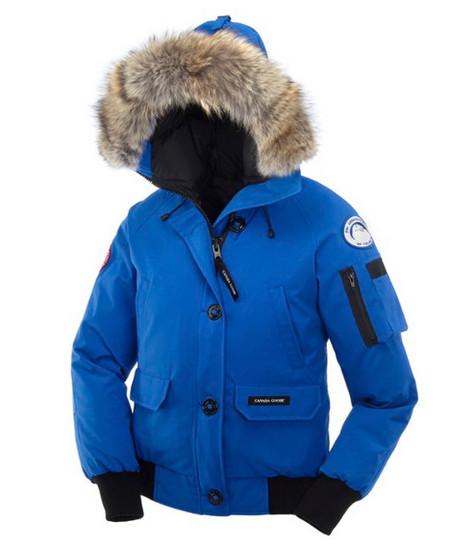 Голубая серия — Polar Bears International (PBI)