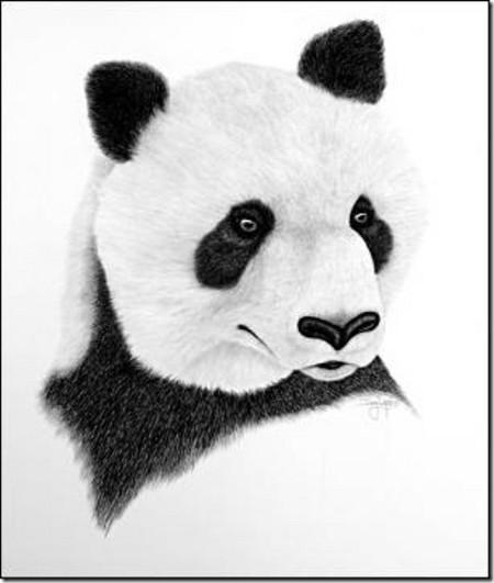 Рисунки карандашом … но не руками. Дуг Лэндис (Doug Landis) – необычный художник. — фото 3