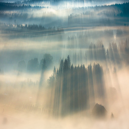 Туманные пейзажи на красивых снимках Богуслава Стремпеля — фото 1