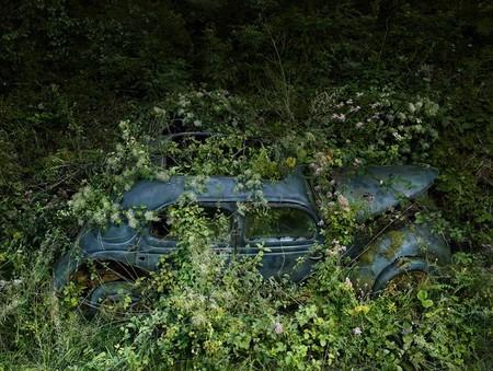 Парковка в раю – работы Питера Липпмана — фото 8