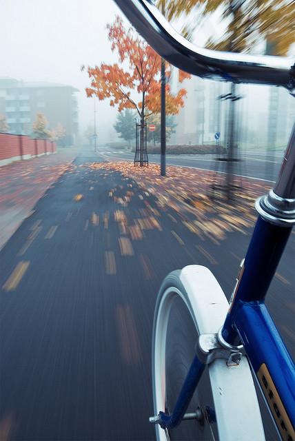 Осень умеет уходить красиво. 55 причин полюбить осень — фото 29