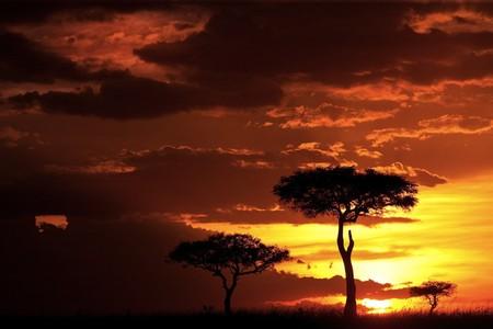 Апельсиновое небо, оранжевый закат – фотографии Суха Дербент (Süha Derbent) — фото 13
