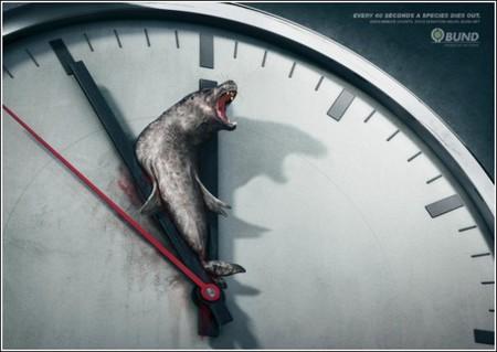 Животные расплачиваются жизнью за человеческую глупость и эгоизм