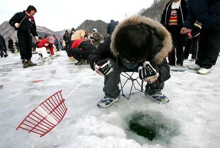 Фестиваль форели – одно из семи зимних чудес — фото 3