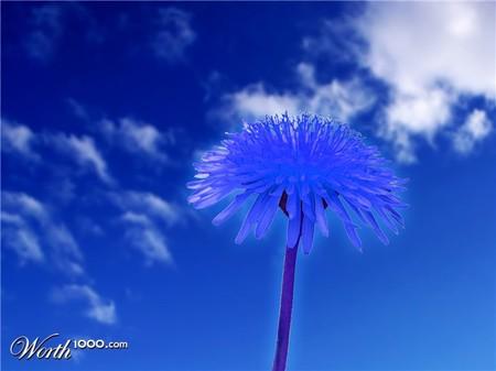 Что, если мир станет более … голубым? Красивый фотошоп — фото 30