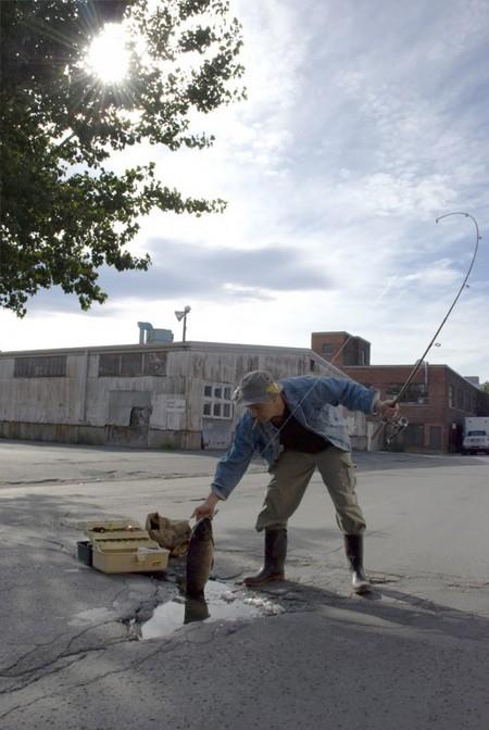 Дэвид Лусиано и Клаудиа Фикка. Что делает художник, когда ему надоедают дорожные ямы? Серию картин! — фото 3