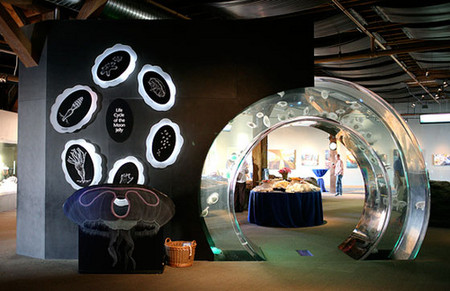 Аквариум – не только домик для рыб. Необычные и разные, маленькие и огромные аквариумы – солисты в интерьере — фото 19