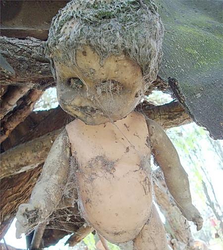 Остров кукол в Мексике – место не для детей — фото 24