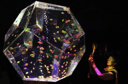 Аквариум, представленный в этом году на выставке в Токио