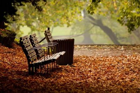 Осень умеет уходить красиво. 55 причин полюбить осень — фото 4