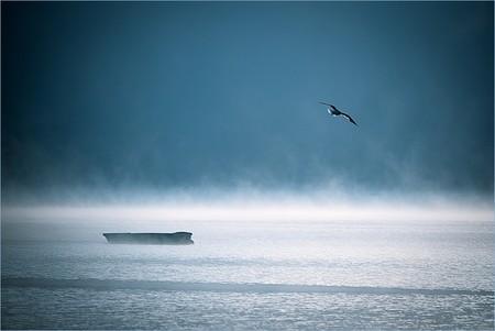 Туманные пейзажи на красивых снимках Богуслава Стремпеля — фото 5