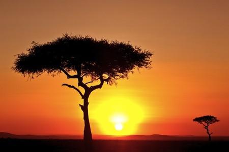 Апельсиновое небо, оранжевый закат – фотографии Суха Дербент (Süha Derbent) — фото 14