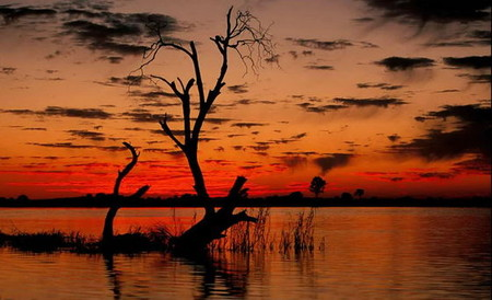 Все снимки этой серии объединяет одно — оранжевый горизонт