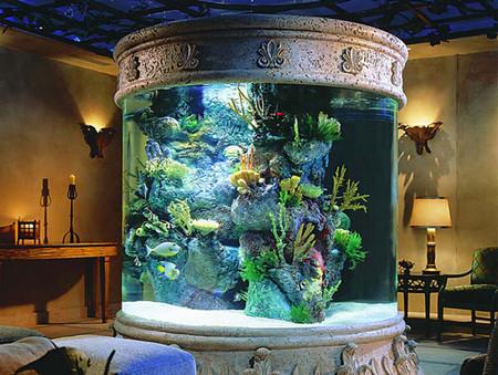 Аквариум – не только домик для рыб. Необычные и разные, маленькие и огромные аквариумы – солисты в интерьере — фото 17