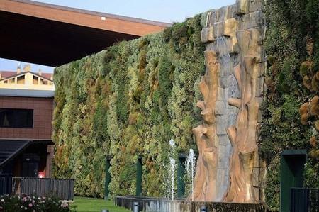Вертикальный сад – рекордсмен — фото 4