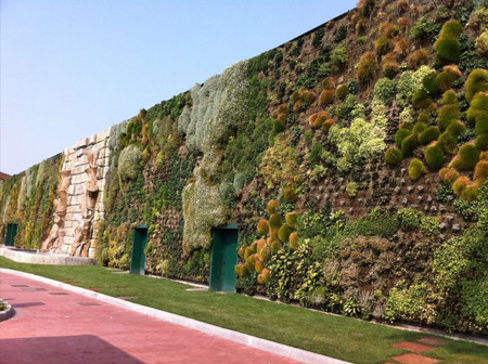 Вертикальный сад – рекордсмен — фото 14