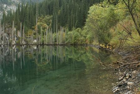 Волшебное озеро Каинды в Казахстане — фото 2
