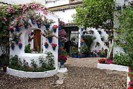 Вертикальные сады-огороды в бутылках — фото 11