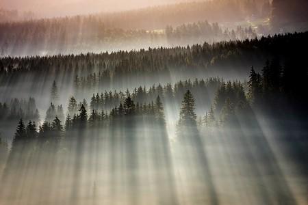 Туманные пейзажи на красивых снимках Богуслава Стремпеля — фото 10