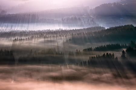 Туманные пейзажи на красивых снимках Богуслава Стремпеля — фото 19