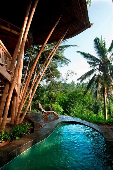 Идеи создателей Green Village набирают популярность. Из бамбука делают мебель и строят — получается надежно и недорого