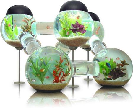 Аквариум – не только домик для рыб. Необычные и разные, маленькие и огромные аквариумы – солисты в интерьере — фото 15