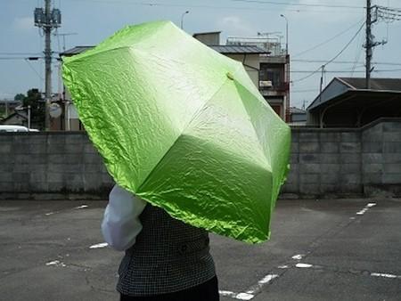 Vegetabrella – самый аппетитный зонтик — фото 6