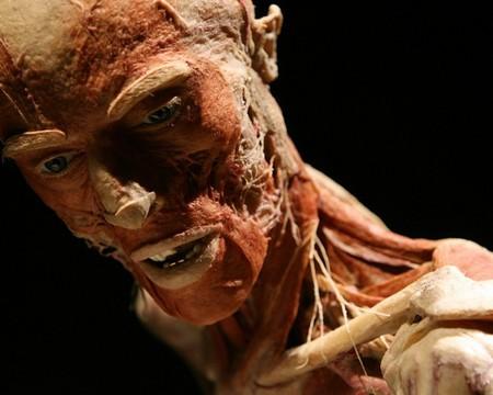«Доктор Смерть» и его Музей Трупов — фото 13