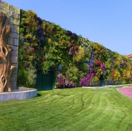 Площадь сада — больше тысячи квадратных метров