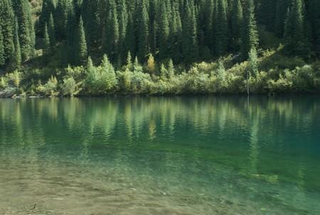 Волшебное озеро Каинды в Казахстане — фото 5