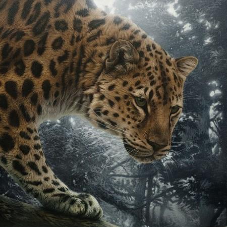 Картины в технике скрэтчборд от Кристины Пенеску — фото 3