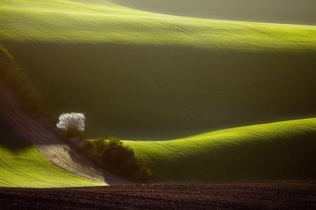 Туманные пейзажи на красивых снимках Богуслава Стремпеля — фото 22