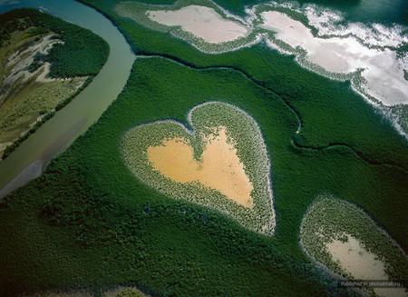 Heart in Voh — участки леса в Новой Каледонии, тихоокеанское побережье