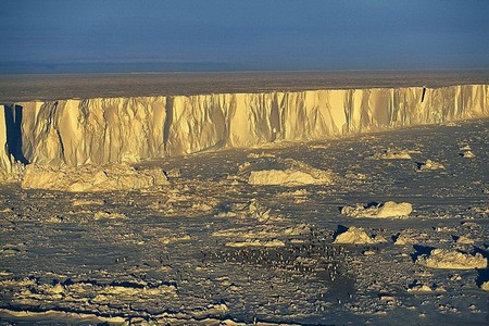 Антарктика, колония пингвинов, остров Бьюфорт
