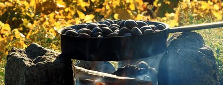 Осень во Франции пахнет каштанами … Fête de la Châtaigne – национальный каштановый праздник — фото 5