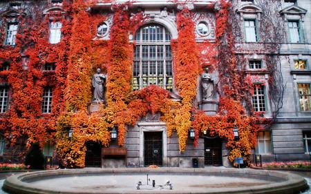 Осень умеет уходить красиво. 55 причин полюбить осень — фото 49
