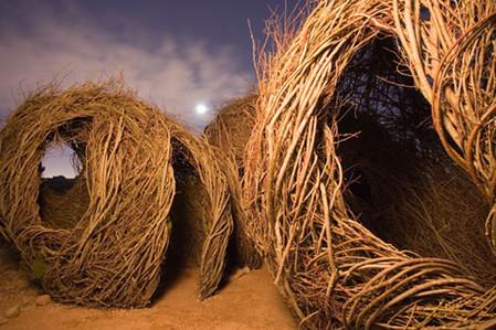 Патрик Догерти – скульптор, который вьет гнезда — фото 12