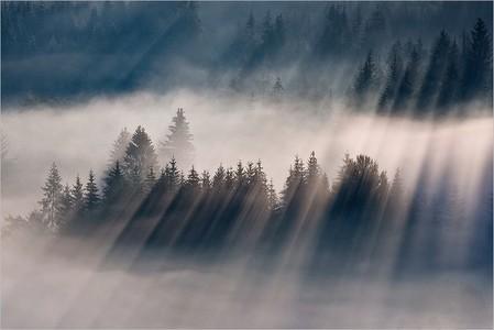 Туманные пейзажи на красивых снимках Богуслава Стремпеля — фото 11